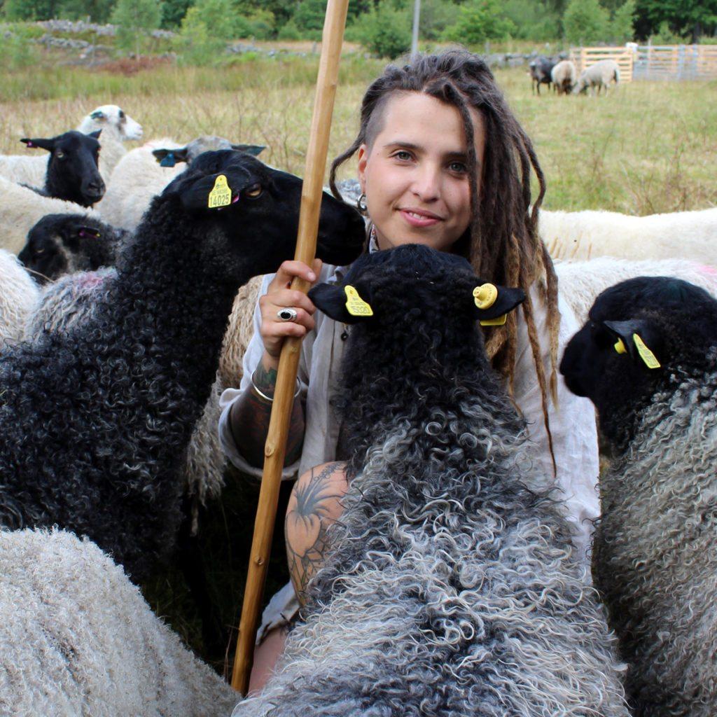 Lamm på Angelikas Gård