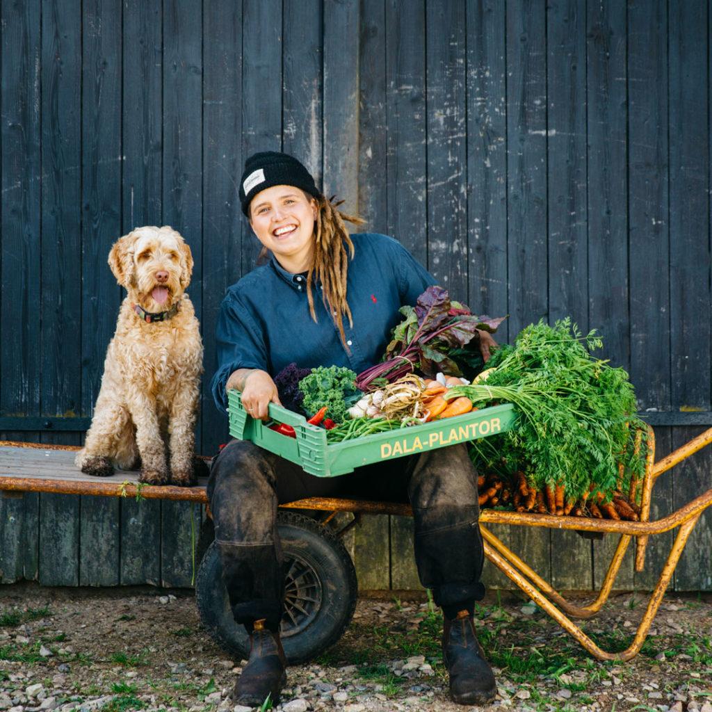 Våra grönsaker nyskördat med Angelika och Valle
